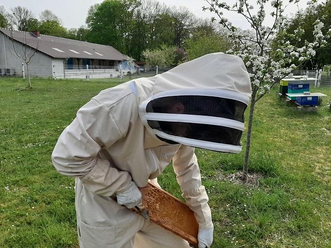 Draulic Combinaison professionnelle a/ér/ée pour apiculture de tout le corps avec gants en cuir Couleur caf/é